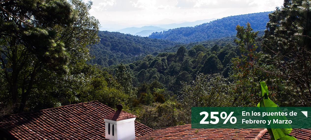 monteverde-enero-web1