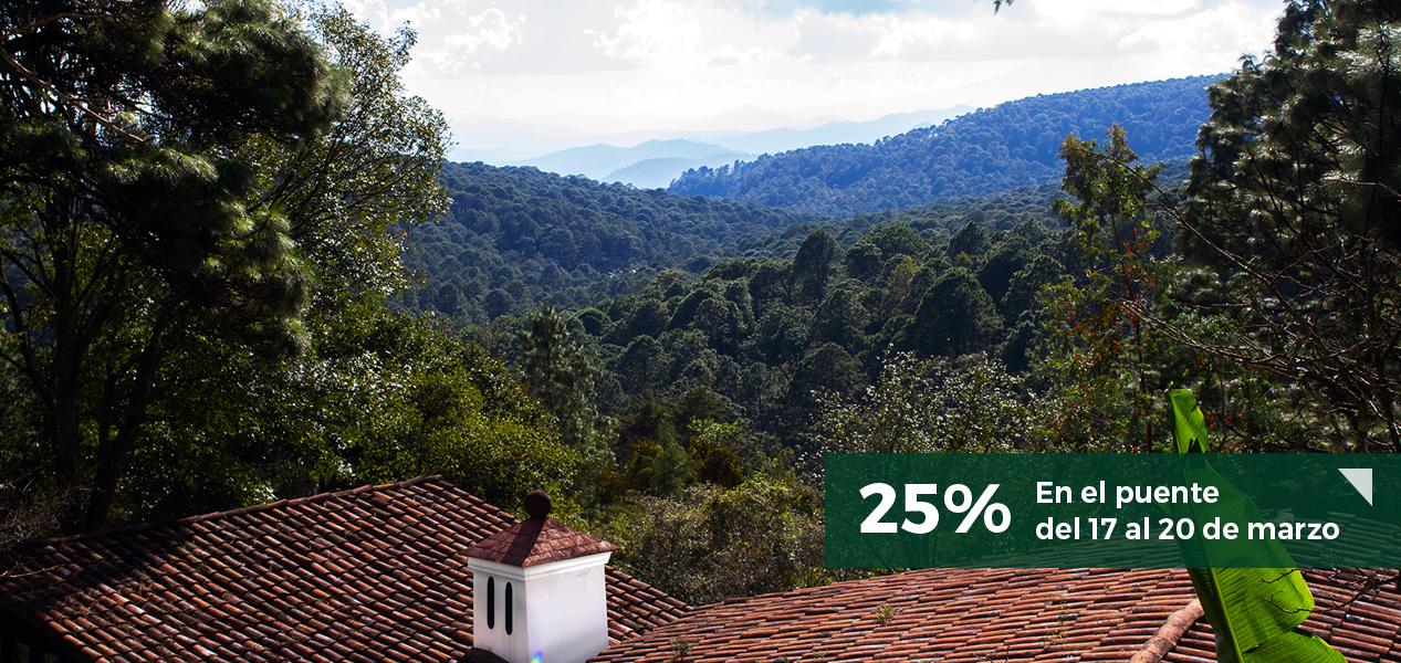 monteverde-web-puente-marzo